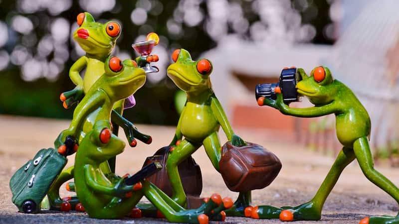 L'anthropomorphisme dans les histoires pour enfants : pour ou contre ?
