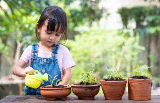 Enfant qui arrose les plantes