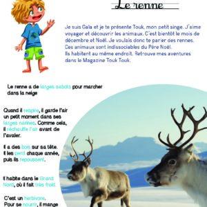 Mini kit d'activités : Renne