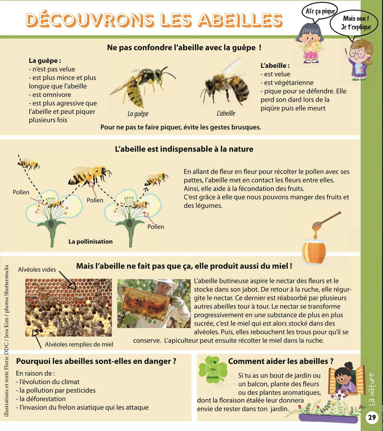 Page abeilles
