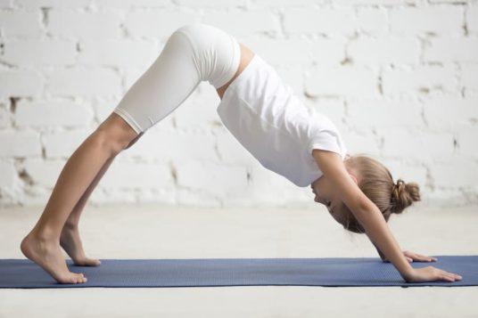 Yoga pose du chien tête en bas
