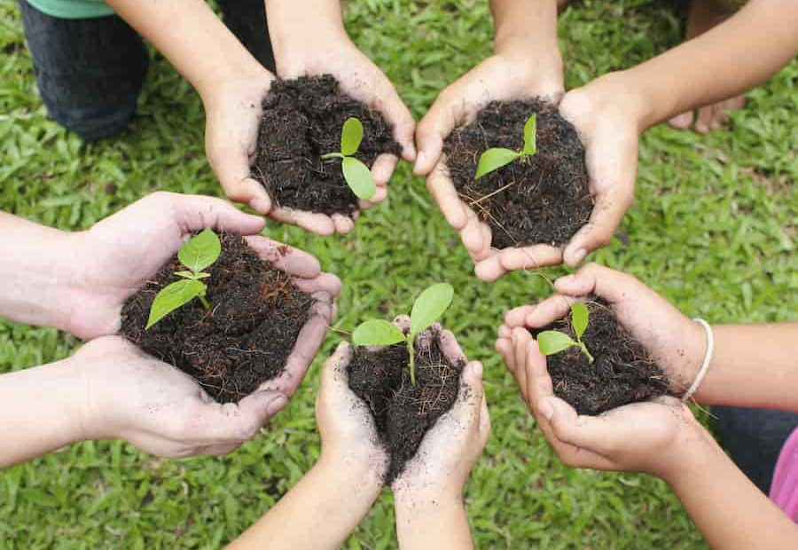 Apprendre le jardinage en famille
