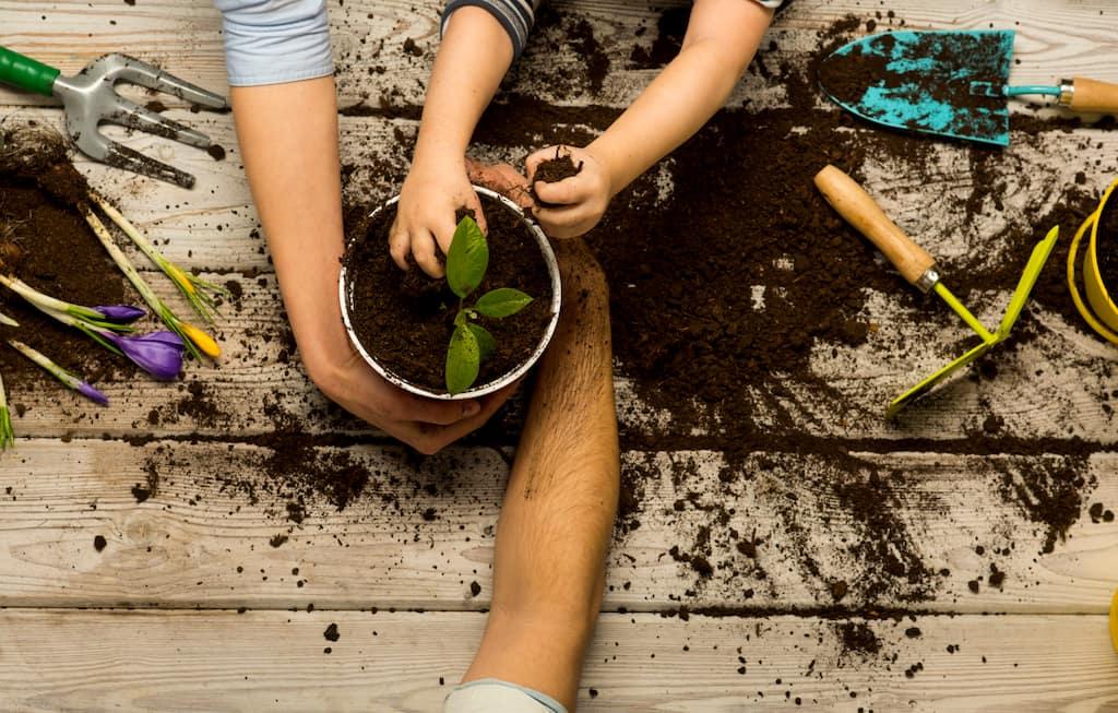 Apprendre le Jardinage aux Enfants : 9 bienfaits