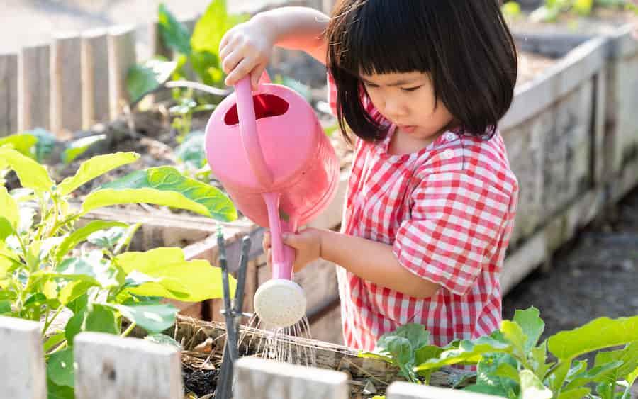 Jeux pour enfants sur la nature : le potager